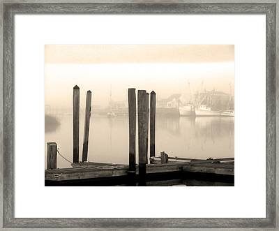 Golden Mornings Framed Print by Paul Boroznoff