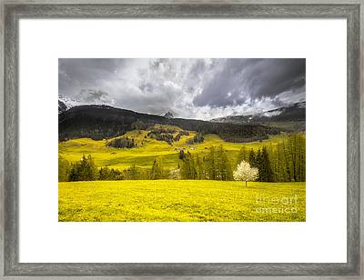 Golden Mountains. Switzerland Framed Print by Mikhail Golovastikov