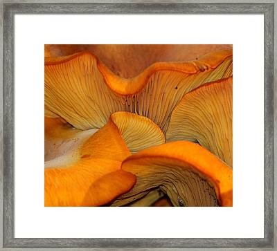 Golden Mushroom Abstract Framed Print