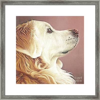 Framed Print featuring the painting Golden Oldie by Donna Mulley