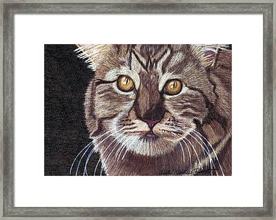 Golden One Framed Print