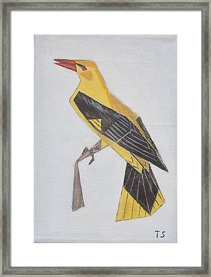 Golden Oriole Framed Print