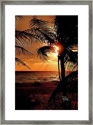 Golden Palm Sunrise Framed Print