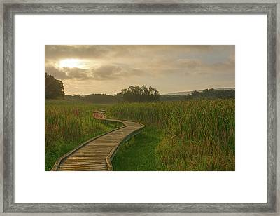Golden Pathway To A Foggy Sun Framed Print by Angelo Marcialis