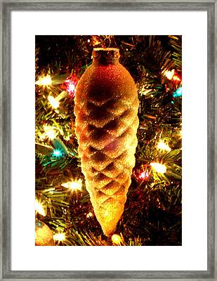 Framed Print featuring the photograph Golden Pine Cone by Diane Merkle