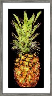 Golden Pineapple Framed Print by Paul Tokarski