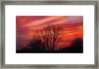 Framed Print featuring the digital art Golden Pink Sunset With Trees by Shelli Fitzpatrick