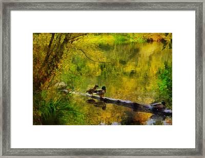 Golden Pond Framed Print by Patricia Strand