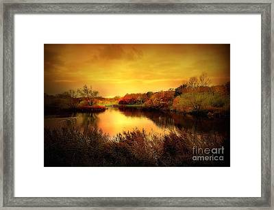 Golden Pond Framed Print by Jacky Gerritsen