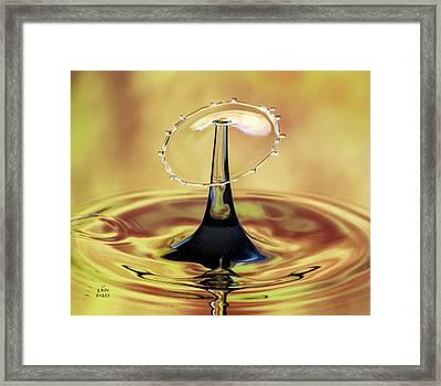 Golden Raindrop Framed Print by John Bailey