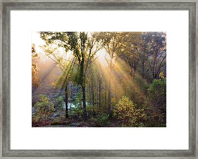 Golden Rays Framed Print by Kristin Elmquist