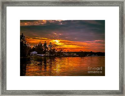 Golden Reflections Framed Print