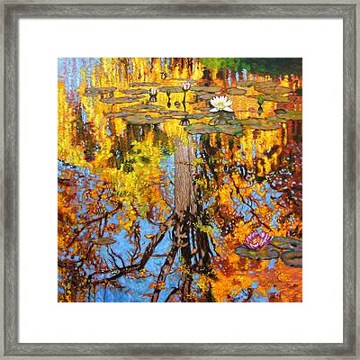 Golden Reflections On Lily Pond Framed Print by John Lautermilch
