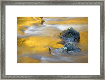 Golden Refuge Framed Print by Mike  Dawson