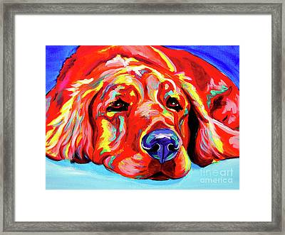 Golden Retriever - Ranger Framed Print by Alicia VanNoy Call