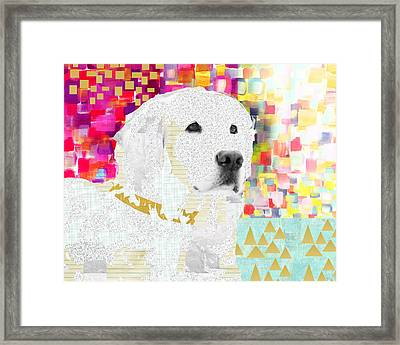 Golden Retriever Collage Framed Print by Claudia Schoen