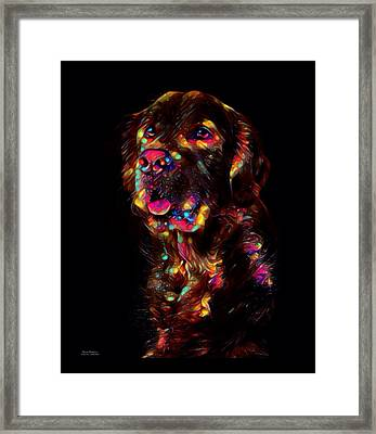 Golden Retriever Color Splash  Framed Print