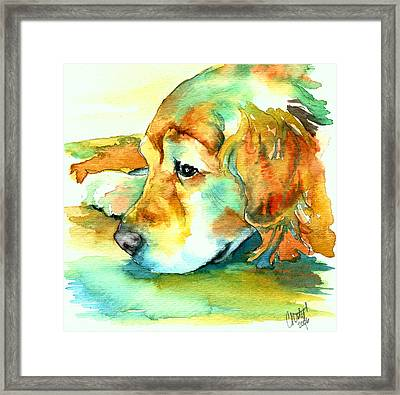 Golden Retriever Profile Framed Print by Christy  Freeman
