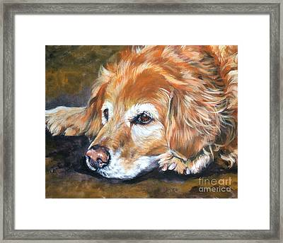 Golden Retriever Senior Framed Print
