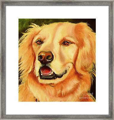 Golden Retriever Sweet As Sugar Framed Print by Susan A Becker
