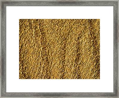 Golden Ripples Framed Print by Wim Lanclus