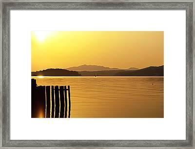 Golden Sail Framed Print by  Kelly Hayner