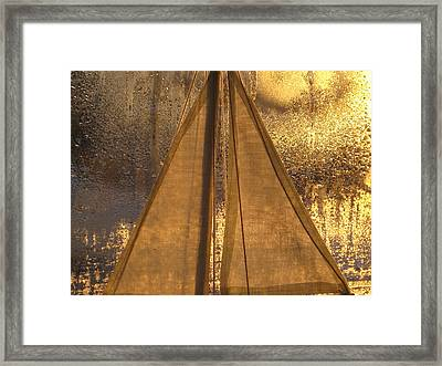 Golden Sails Framed Print by Lori  Secouler-Beaudry