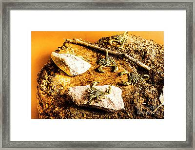 Golden Scorpion Amulets Framed Print
