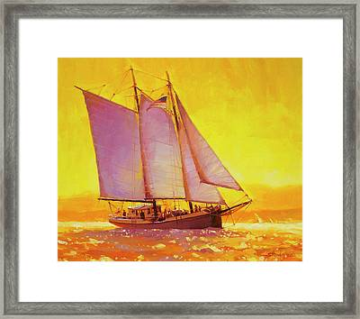 Golden Sea Framed Print
