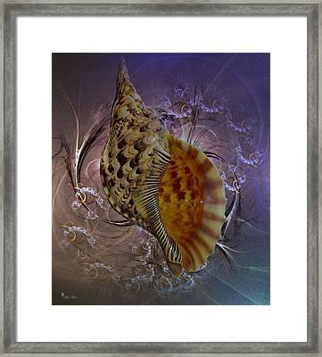 Golden Shell  2 Framed Print