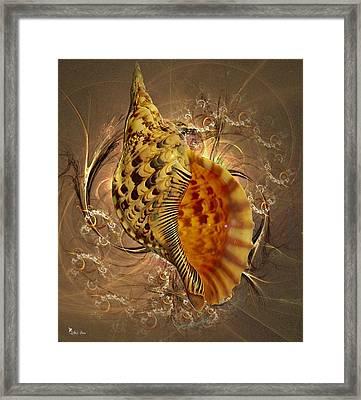 Golden Shell  Framed Print