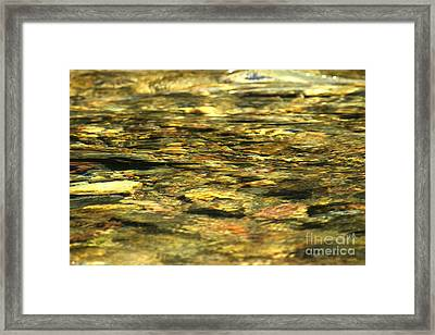 Golden Shimmers Framed Print by Adam Jewell