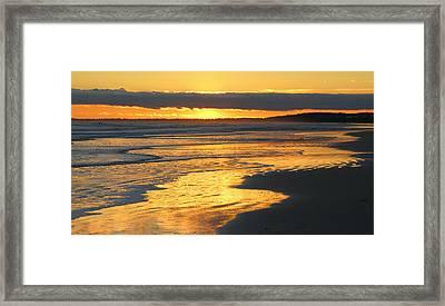 Golden Shore Framed Print by Rosanne Jordan