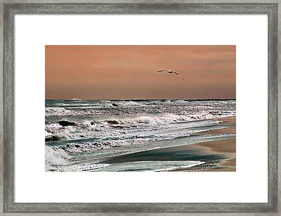 Framed Print featuring the photograph Golden Shore by Steve Karol