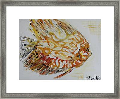 Golden Framed Print by Sladjana Lazarevic