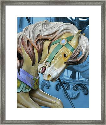 Golden Steed Framed Print by JAMART Photography