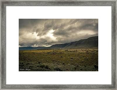 Golden Storm Framed Print by Andrew Matwijec