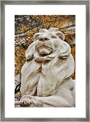 Golden Lion Strength Framed Print by JAMART Photography