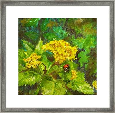 Golden Summer Blooms Framed Print