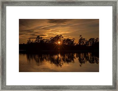 Golden Sunburst At The Lake New Jersey  Framed Print by Terry DeLuco