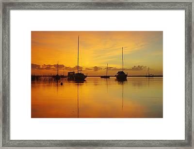 Golden Sunrise At Boreen Point Framed Print