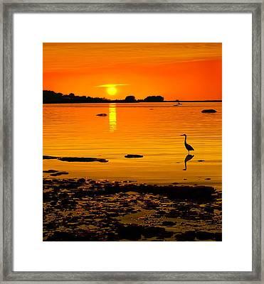Golden Sunset At The Bay Framed Print