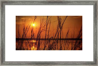 Golden Sunset At The Lake Framed Print