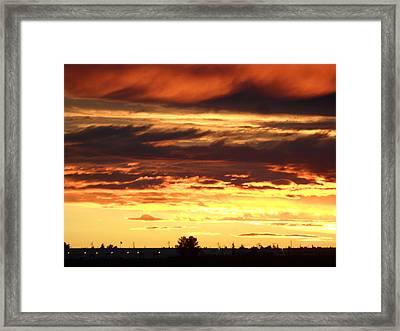 Golden Sunset IIi Framed Print by Mark Lehar