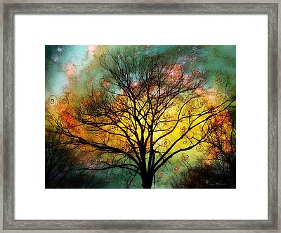 Golden Sunset Treescape Framed Print by Barbara Chichester