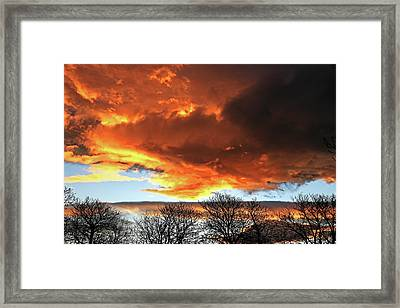 Golden Sunset With Filigree Trees Framed Print