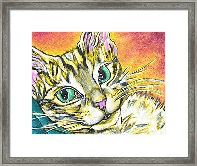 Golden Tabby Framed Print by Sarah Crumpler
