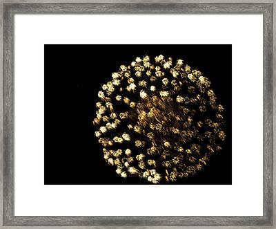 Framed Print featuring the photograph Golden by Tara Lynn