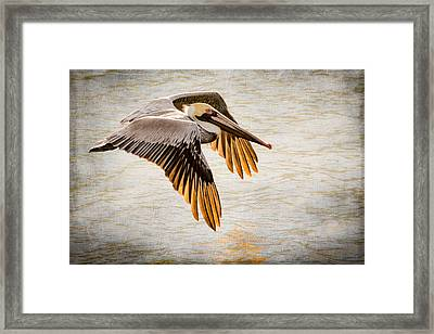 Golden Tips Framed Print