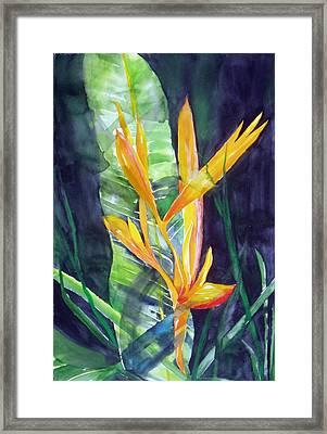 Golden Torch Framed Print by Maritza Bermudez
